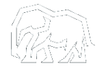 Логотип компании ARM auto