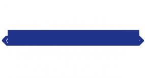 Логотип компании Rem-Motor