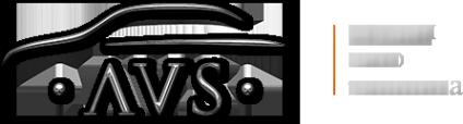 Логотип компании AVS
