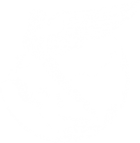 Логотип компании Люксор