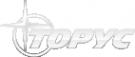 Логотип компании Торус Регион