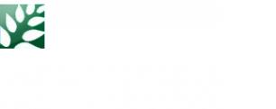 Логотип компании Лайфресурс