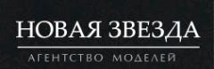 Логотип компании Новая звезда
