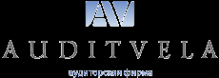 Логотип компании Аудит-Вела