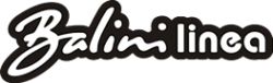 Логотип компании Балини
