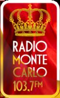 Логотип компании Monte Carlo
