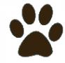 Логотип компании Умка