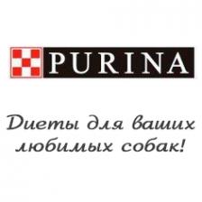 Логотип компании Актериус