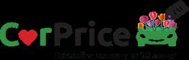 Логотип компании CarPrice