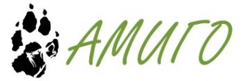 Логотип компании Ветеринарная клиника Амиго