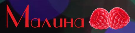Логотип компании Малина